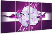 Glasschilderij Orchidee   Paars, Wit   160x80cm 4Luik   Foto print op Glas    F005769