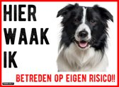 Waakbord Border Collie Dibond 20x15