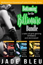 Bottoming for the Billionaire Bundle