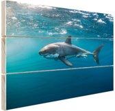 FotoCadeau.nl - Mensenhaai aan de oppervlakte Hout 80x60 cm - Foto print op Hout (Wanddecoratie)