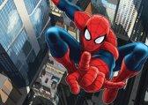 Dutch Wallcoverings Fotobehang Spiderman Big,  4-d