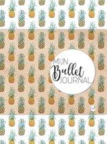 Mijn Bullet Journal Ananas + Mijn Bullet Journal Stickerboek