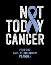 Not Today Esophageal Cancer: 2020 -2021 Daily/ Weekly/ Monthly Planner: 2-Year Personal Planner with Grid Calendar Esophagus Cancer Periwinkle Awar