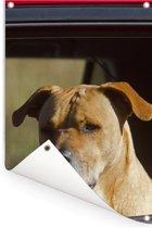 Een Staffordshire Bull Terrier in een rode auto Tuinposter 80x120 cm - Tuindoek / Buitencanvas / Schilderijen voor buiten (tuin decoratie)
