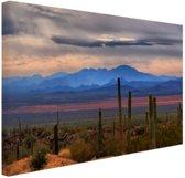 FotoCadeau.nl - Sonoran woestijn Mexico Canvas 60x40 cm - Foto print op Canvas schilderij (Wanddecoratie)