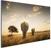 FotoCadeau.nl - Olifant en kalf savanne Aluminium 30x20 cm - Foto print op Aluminium (metaal wanddecoratie)