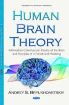Human Brain Theory