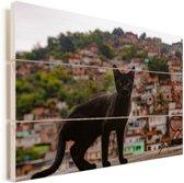 Een straatkat bevindt zich voor een favela in Rio de Janeiro Vurenhout met planken 60x40 cm - Foto print op Hout (Wanddecoratie)