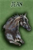 Watercolor Mustang Jean