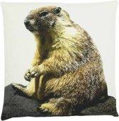Mars & More - Sierkussen - Canvas - Marmot - 50x50cm