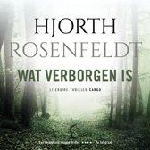 Boekomslag van 'De Bergmankronieken - Wat verborgen is'