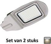 30W LED Straatlamp | 4000K |Als terrein, oprit en pleinverlichting|set van 2