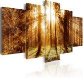 Schilderij - Verlichting in het bos, 5luik