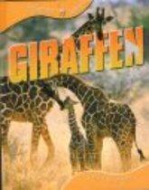 Dieren leven - Giraffen