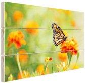 Monarchvlinder op bloem Hout 60x40 cm - Foto print op Hout (Wanddecoratie)