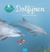 Willewete - Dolfijnen