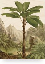 Houten paneel, Banana Tree, KEK Amsterdam, medium
