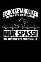 Eishockeyaholiker