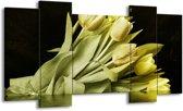 Canvas schilderij Tulp | Groen, Grijs | 120x65 5Luik
