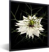 Foto in lijst - Een witte nigelle plant met een zwarte achtergrond fotolijst zwart 40x50 cm - Poster in lijst (Wanddecoratie woonkamer / slaapkamer)
