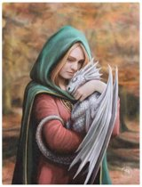 Safe Haven Anne Stokes canvas wanddecoratie vrouw figuur met draakje