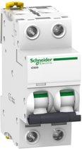 Schneider Electric Merlin Gerin Installatieautomaat A9F75220 SE IC60N 2P D20