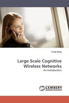 Large Scale Cognitive Wireless Networks