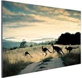 FotoCadeau.nl - Kangoeroes op de weg  Aluminium 30x20 cm - Foto print op Aluminium (metaal wanddecoratie)