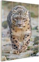 Lopende sneeuwluipaard Hout 20x30 cm - klein - Foto print op Hout (Wanddecoratie)