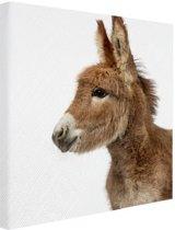 Kleine ezel Canvas 40x60 cm - Foto print op Canvas schilderij (Wanddecoratie woonkamer / slaapkamer) / Dieren Canvas Schilderij
