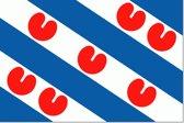 Friese vlag 50x75cm