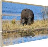 Moeder en baby nijlpaarden Hout 30x20 cm - klein - Foto print op Hout (Wanddecoratie)