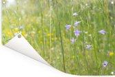 Een repelsteeltje in een wei met veel groen Tuinposter 90x60 cm - Tuindoek / Buitencanvas / Schilderijen voor buiten (tuin decoratie)