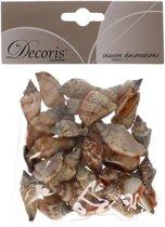 Puntige decoratie schelpen Strombus Urceum 3 cm - Natuurlijke schelpjes in zakje - Maritiem/strand thema woondecoratie