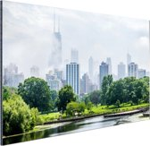 Groen park in Chicago Aluminium 90x60 cm - Foto print op Aluminium (metaal wanddecoratie)