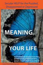 The Meaning of Your Life