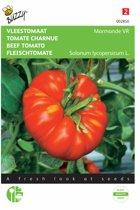 Vleestomaten Marmande - Lycopersicon esculentum - set van 7 stuks