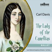 The Lady Of The Camellias