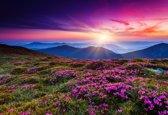 Papermoon Summer Mountains Vlies Fotobehang 500x280cm 10-Banen