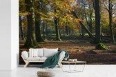 Fotobehang vinyl - Herfstkleurige bomen in het Nationaal park Peak District in Engeland breedte 450 cm x hoogte 300 cm - Foto print op behang (in 7 formaten beschikbaar)