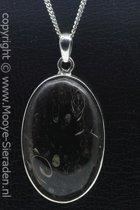 Zilveren Fossiel edelsteen ketting hanger