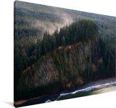 Bossen op de klif bij Haida Gwaii in Canada Canvas 120x80 cm - Foto print op Canvas schilderij (Wanddecoratie woonkamer / slaapkamer)