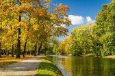 Papermoon River in Autumn Park Vlies Fotobehang 400x260cm 8-Banen
