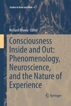 Consciousness Inside and Out