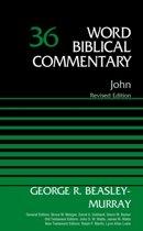 John, Volume 36
