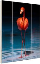 Flamingo donkere achtergrond Hout 80x120 cm - Foto print op Hout (Wanddecoratie)