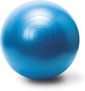 Body & Fit Accessoires Gymbal incl. pomp - Blue