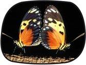 Auto zonnescherm vlinders