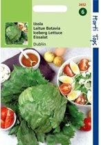 Ijssla Dublin - Lactuca sativa - set van 4 stuks