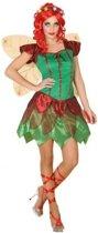 Toverfee/elfen jurkje verkleedkleding voor dames - voordelig geprijsd XS/S (34-36)
